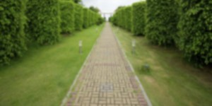 A path directed towards the exit of a maze.
